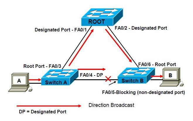Spanning Tree Protocol Overview